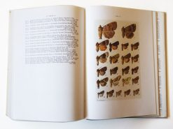 KHB222 Die Schmetterlinge Mitteleuropas Eulen binnen
