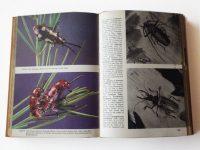 KHB806 Pictotal Encyclopedia of insects binnen