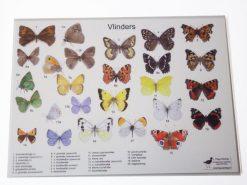 KHM501 placemat-vlinders