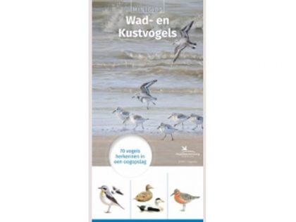 KNNV76 Minigids wad-en kustvogels