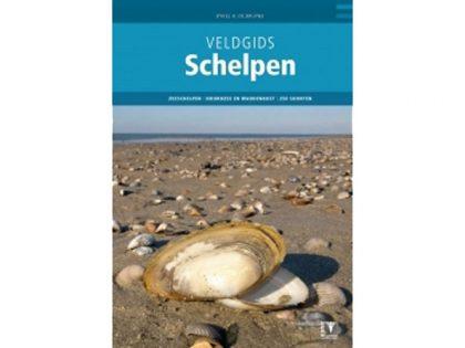 VG37 Veldgids Schelpen