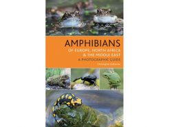 AMP amphibiens-of-europ,-north-africa