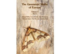9.126 geomitrid-moths-vol-6