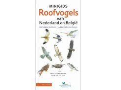 KNNV87 minigids_roofvogels_van_nederland_en_belgië