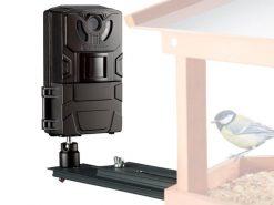 3310006 wildcamera-vogel-en-kleindieren