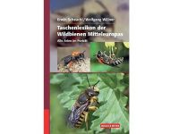 QM06 Taschenlexikon der Wildbienen Mitteleuropas
