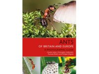 7.296a Ants of Europe