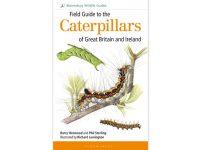 9.053 fieldguide-to-the-caterpillars