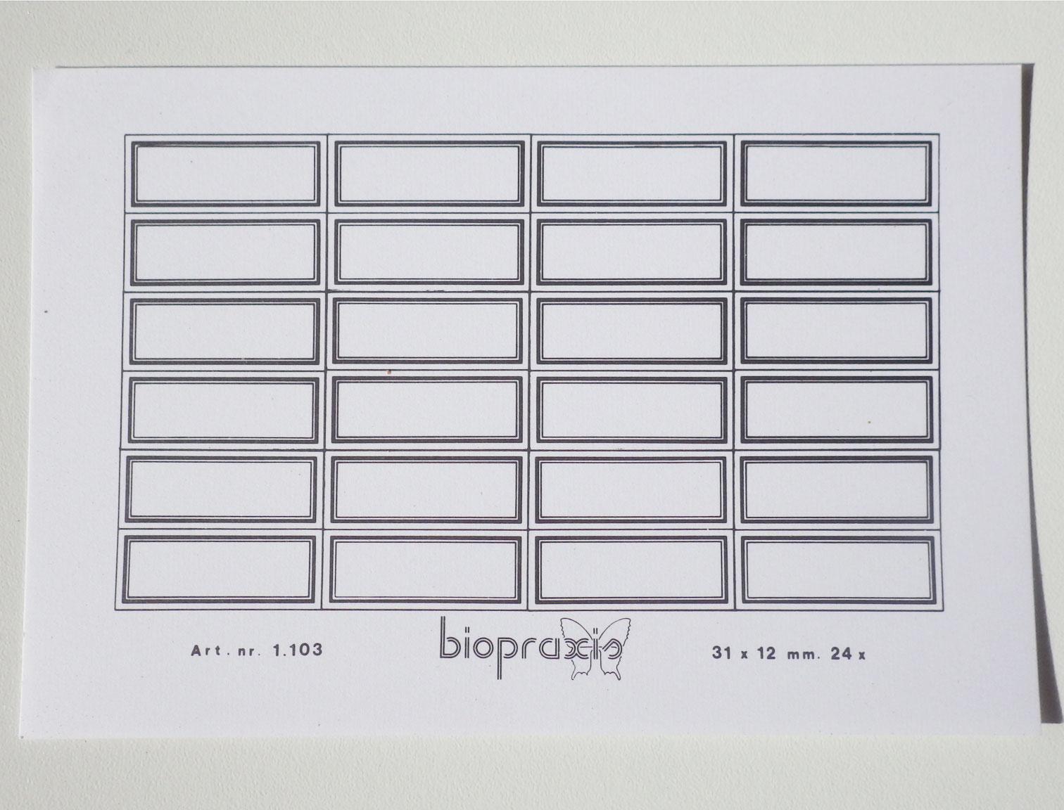 biopraxis-31x9-2