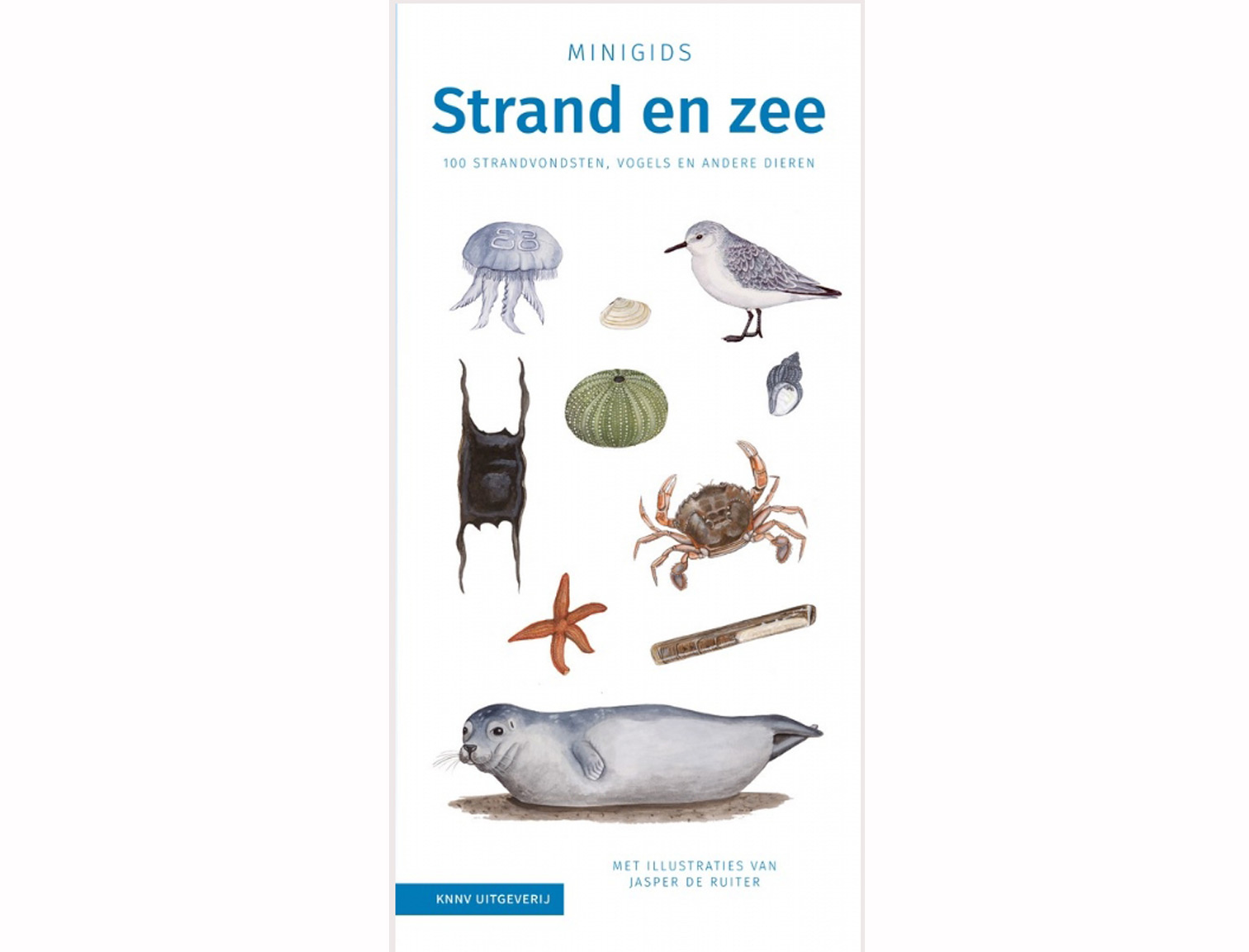 minigids_strand_en_zee