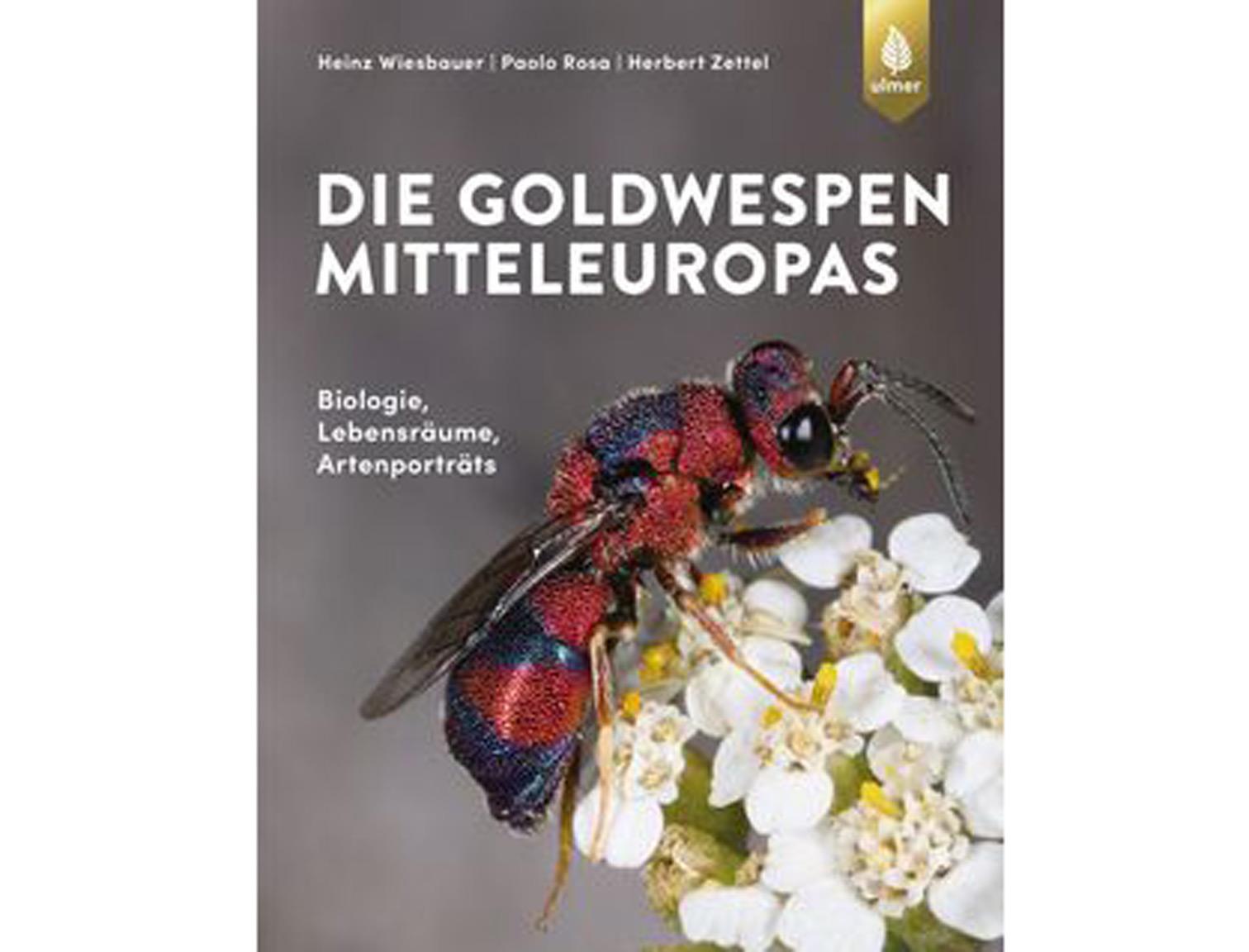 Die-Goldwespen-Mitteleuropas