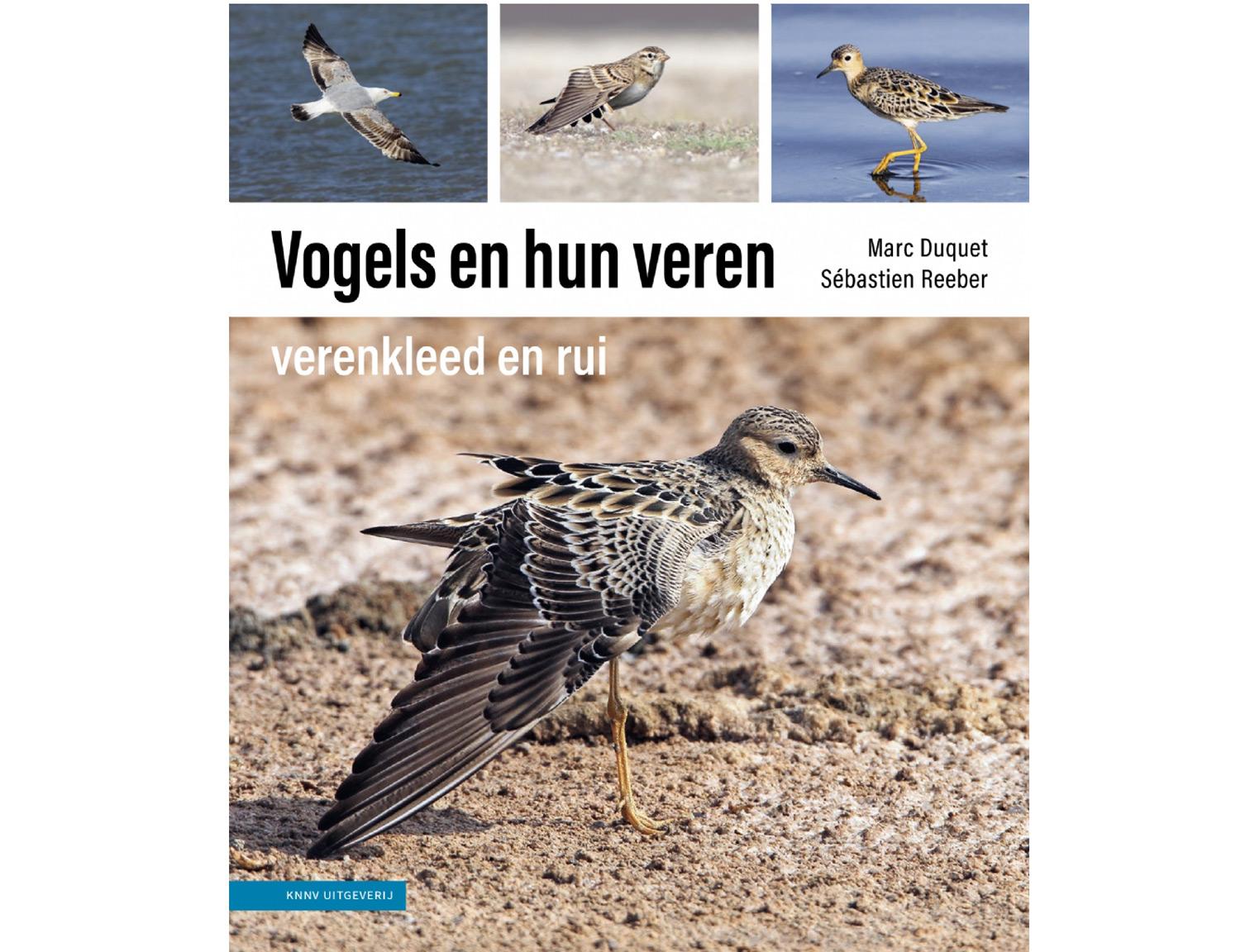 vogels_en_hun_veren