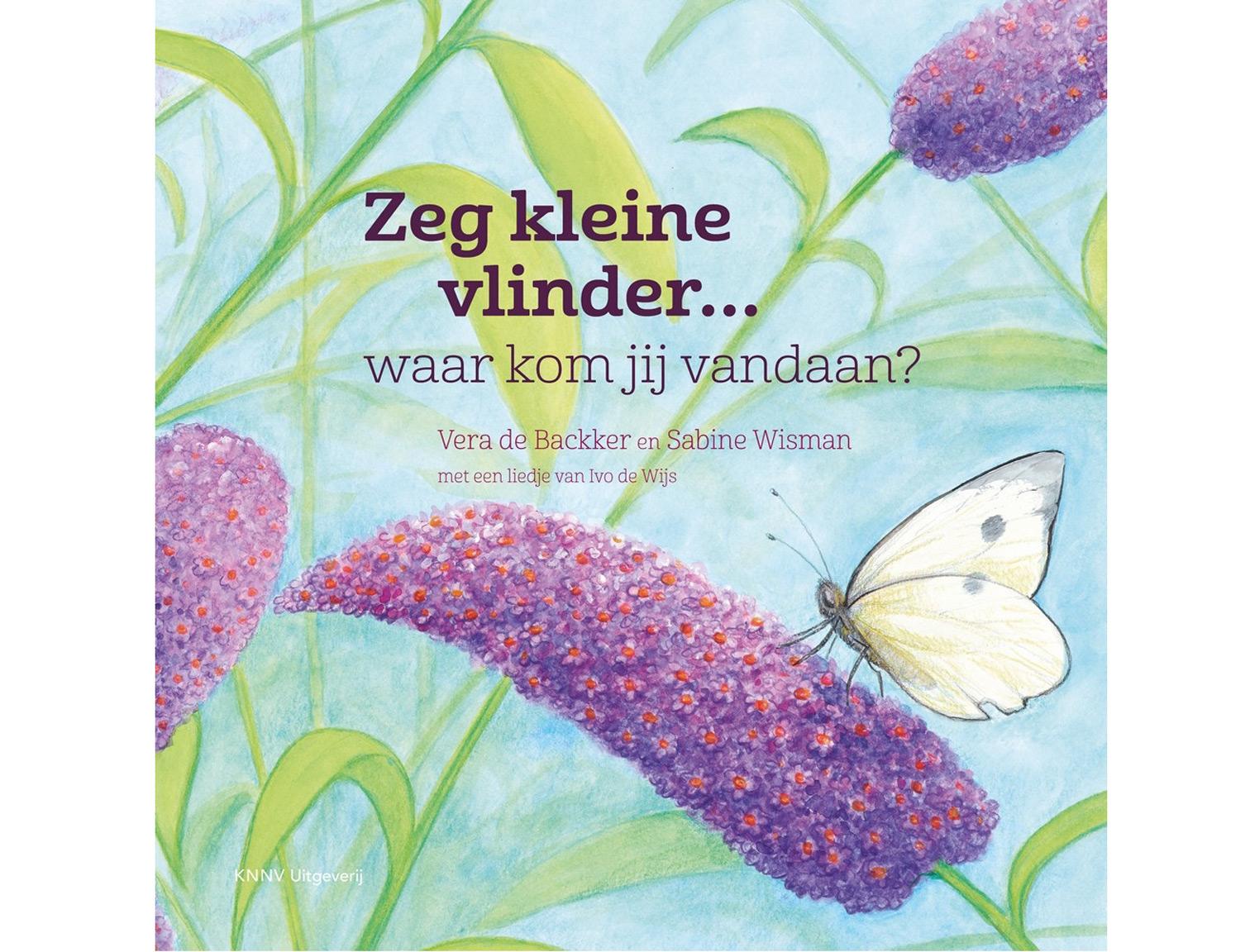 Zeg_kleine_vlinder
