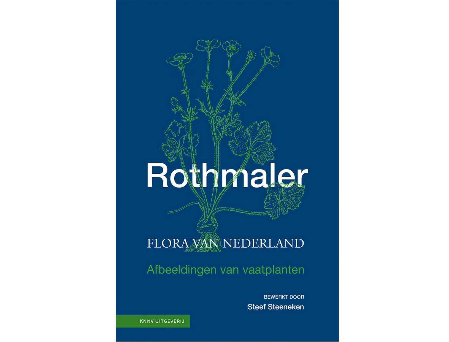 rothmaler(1)