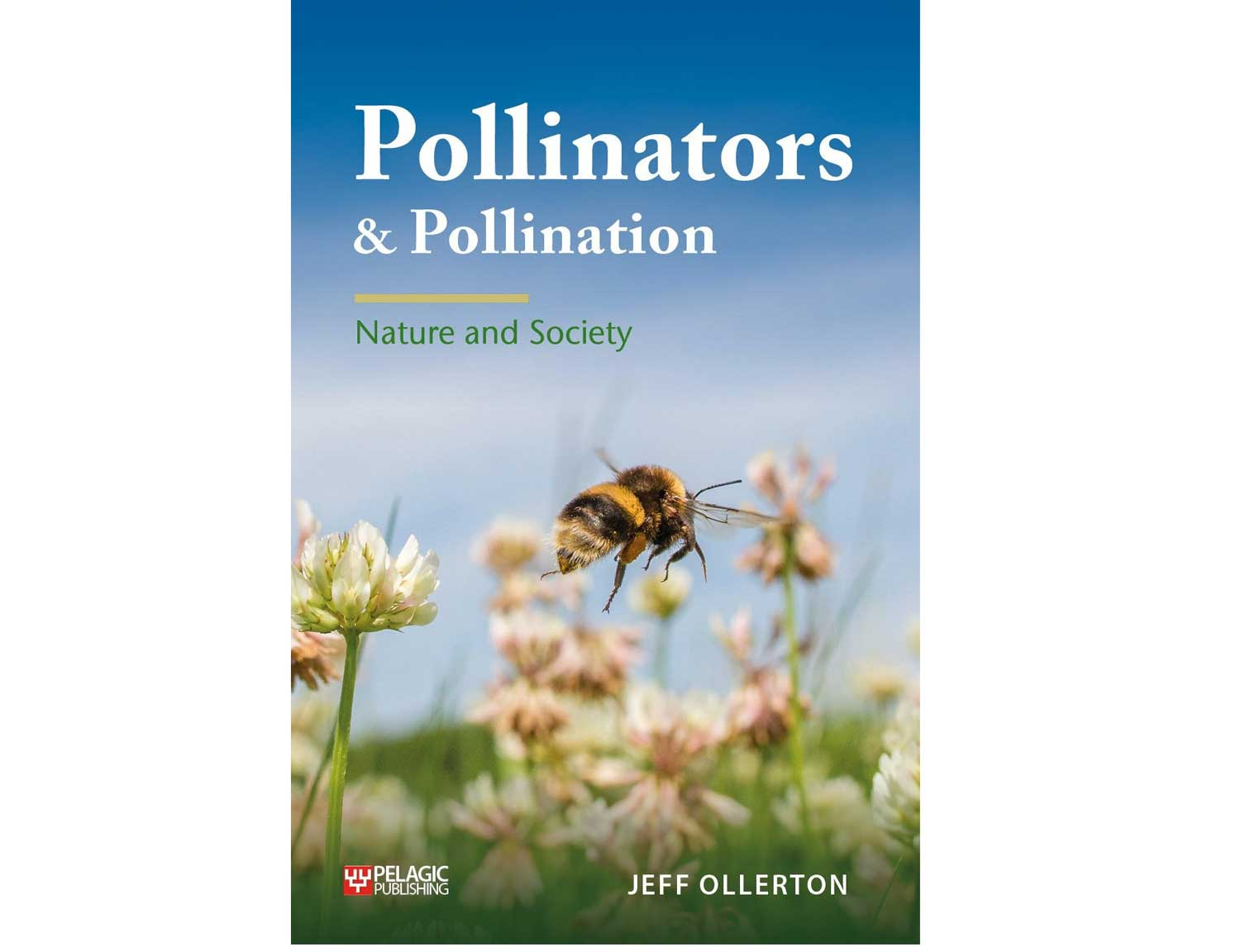 pollinators-pollination-pelagic