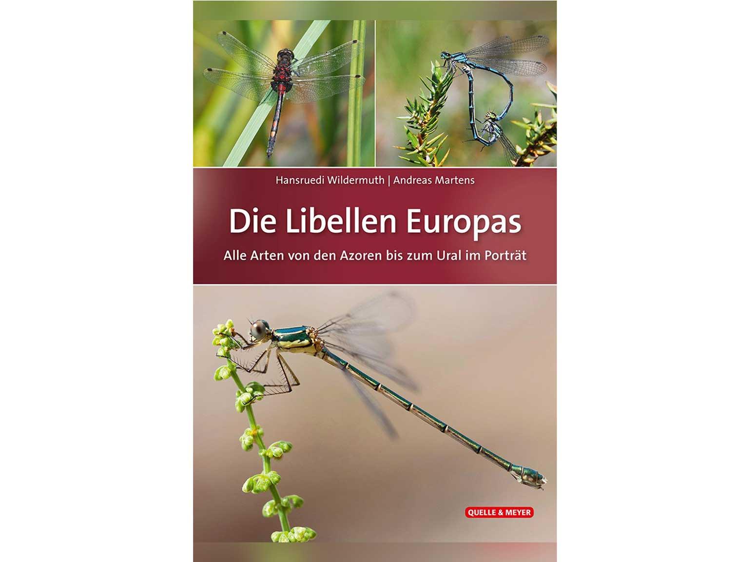 Libellen-europas