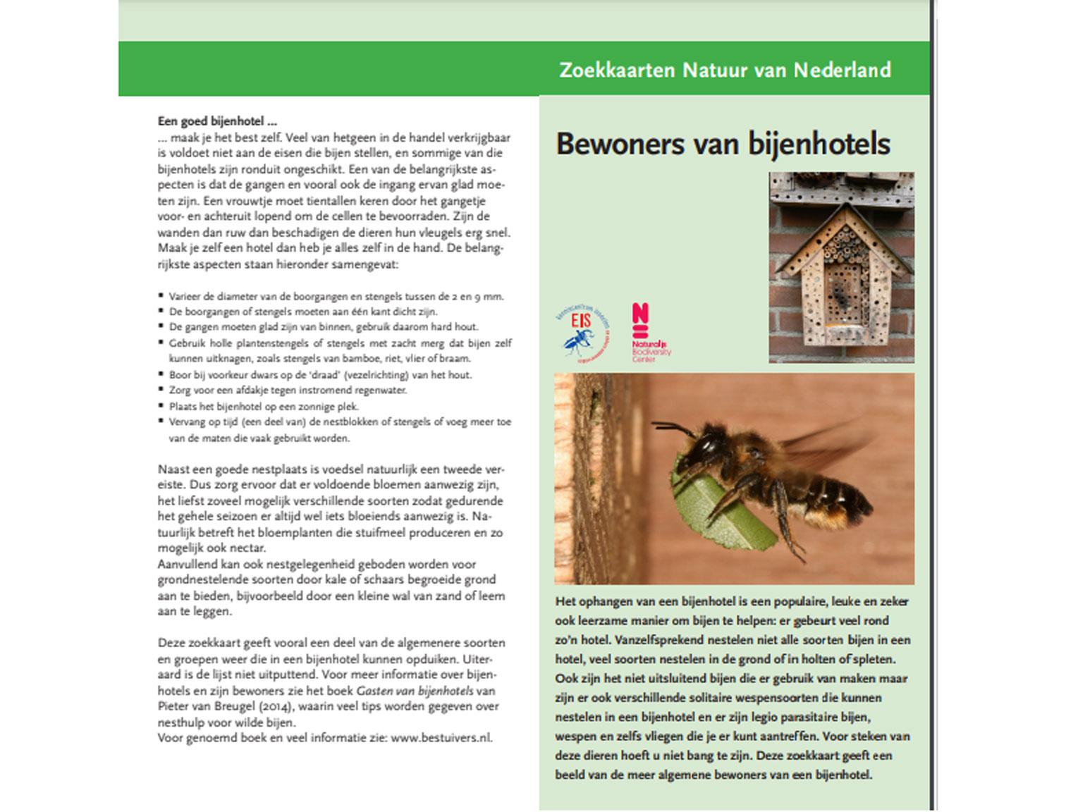 bewoners-bijenhotels