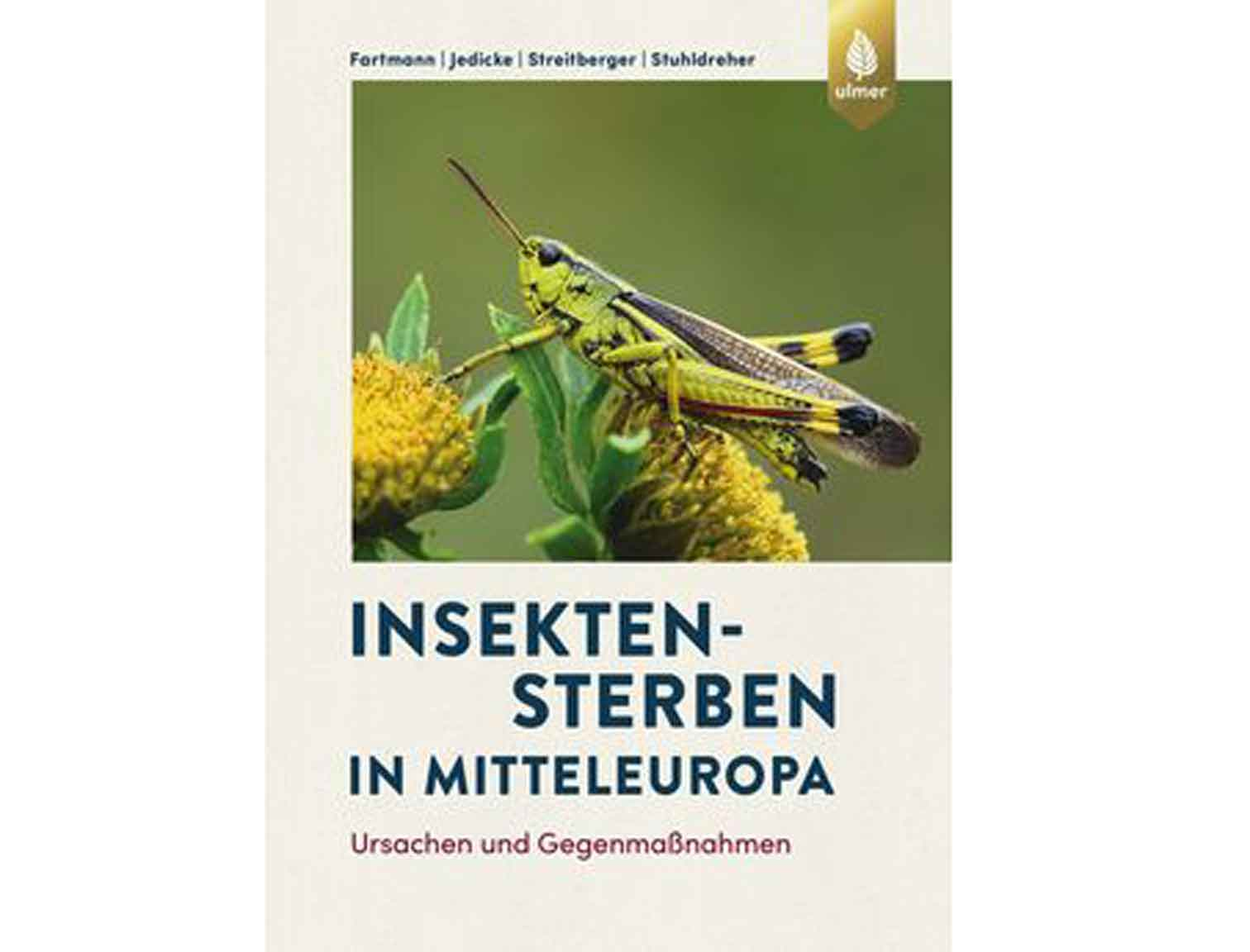 Insektensterben-in-Mitteleuropa