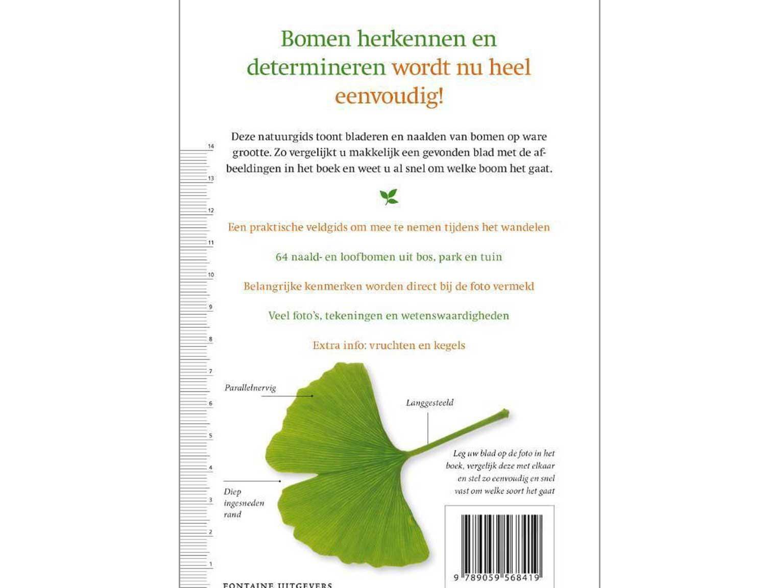 boombladeren-2