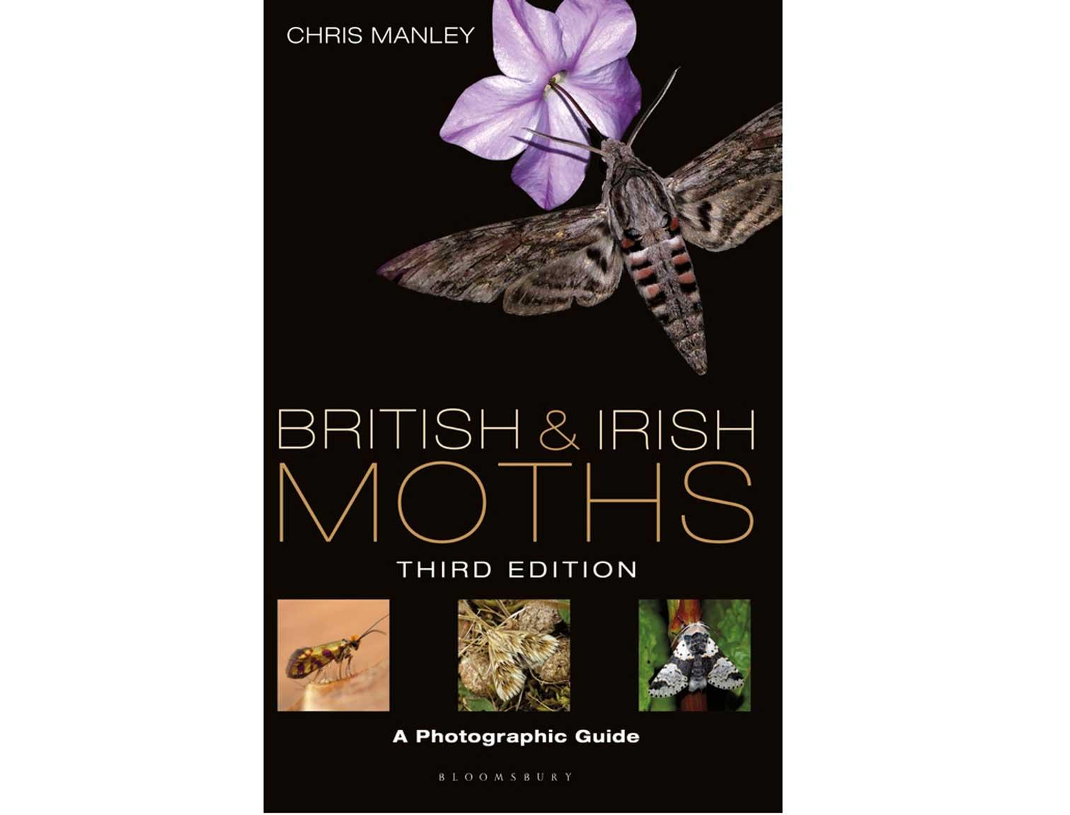 british-moths-3e
