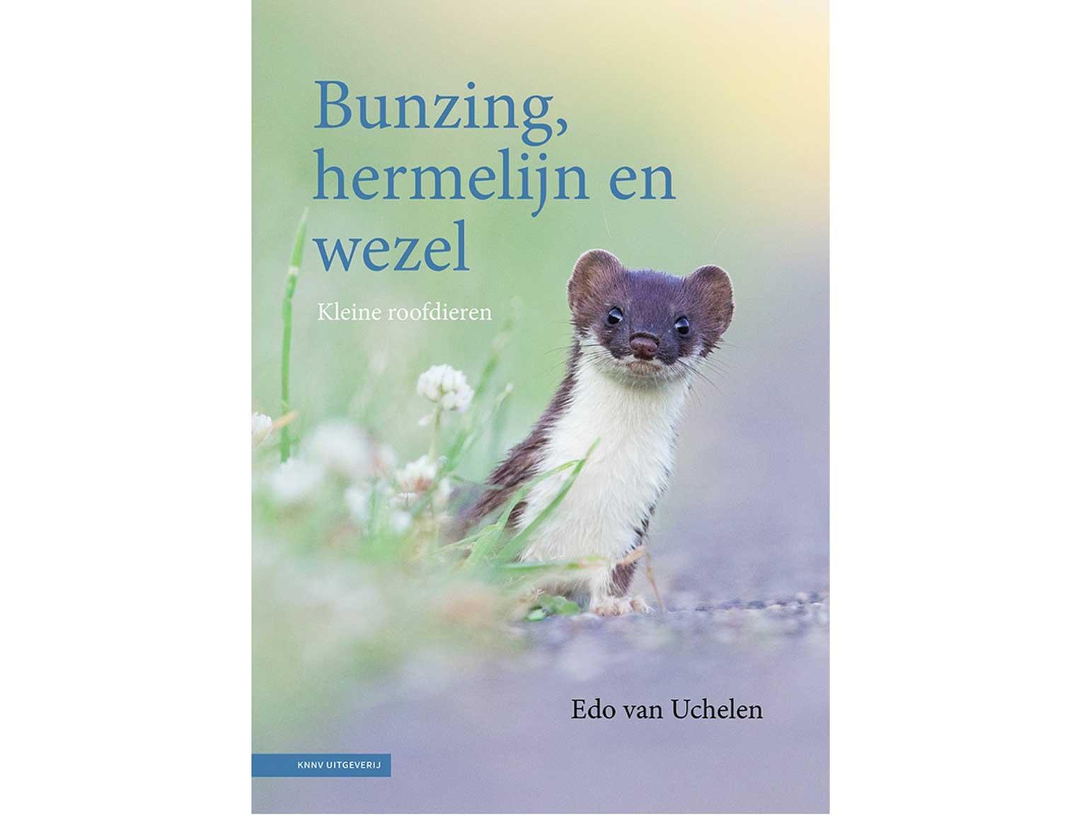 bunzing,_hermelijn_en_wezel(1)