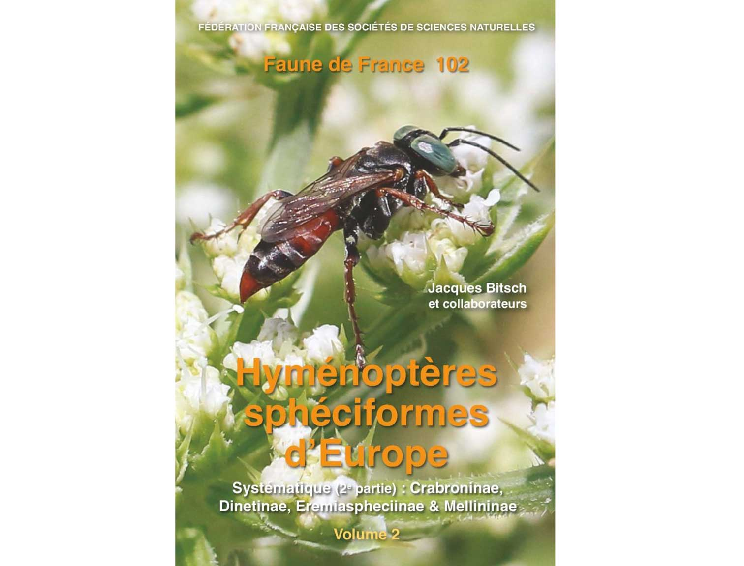 hymenopteres-déurope-2