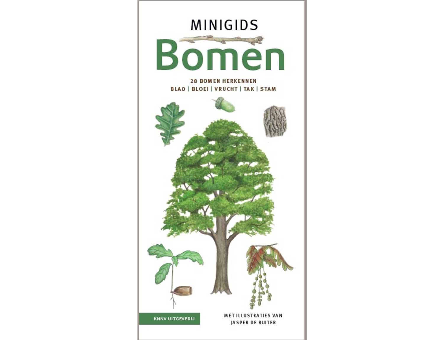 minigids_bomen