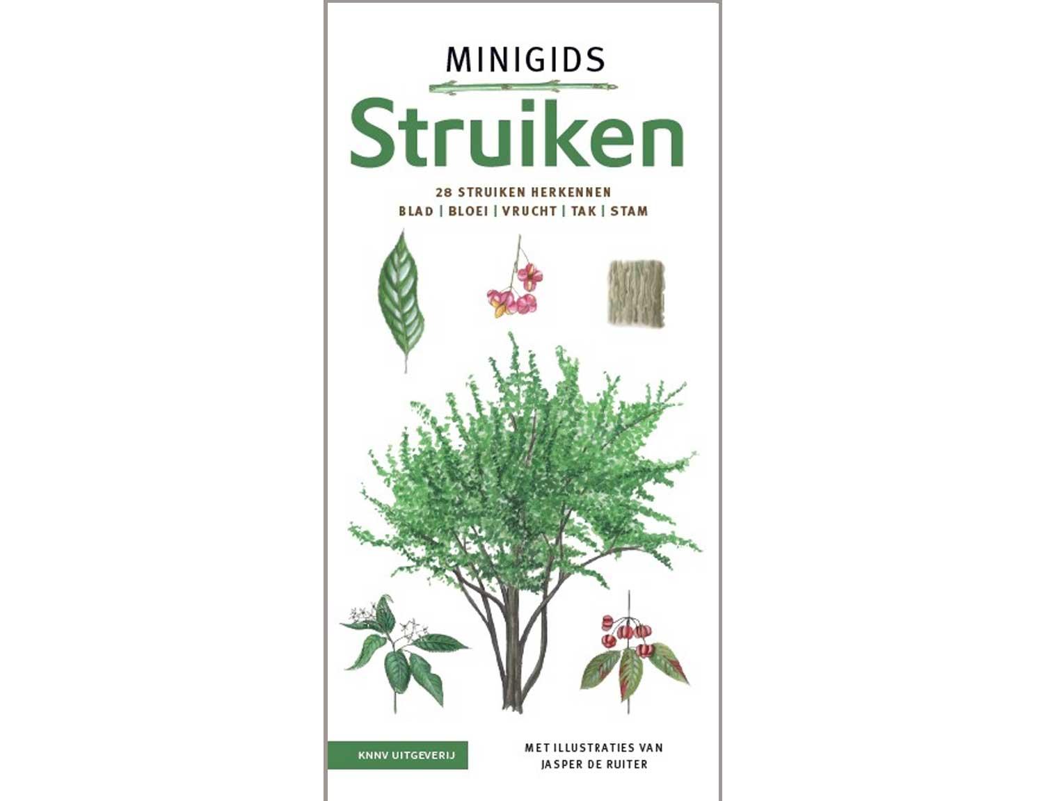 minigids_struiken